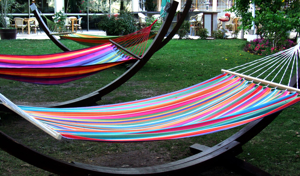 hammock in backyard